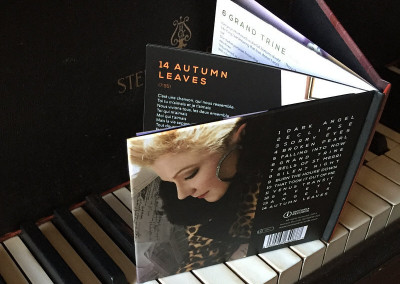 Constance Hauman - Falling into Now - Music Album CD Package (3) 800x